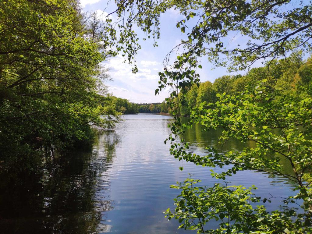 Lake Krumme Lanke