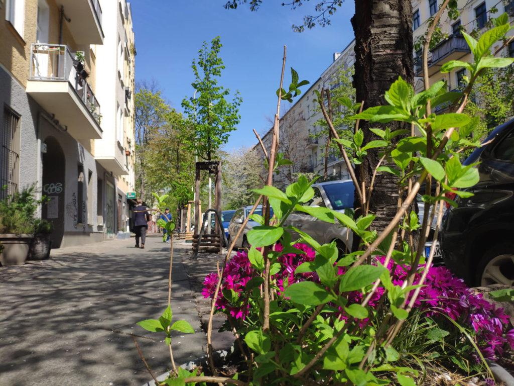 Lychener Strasse Berlin
